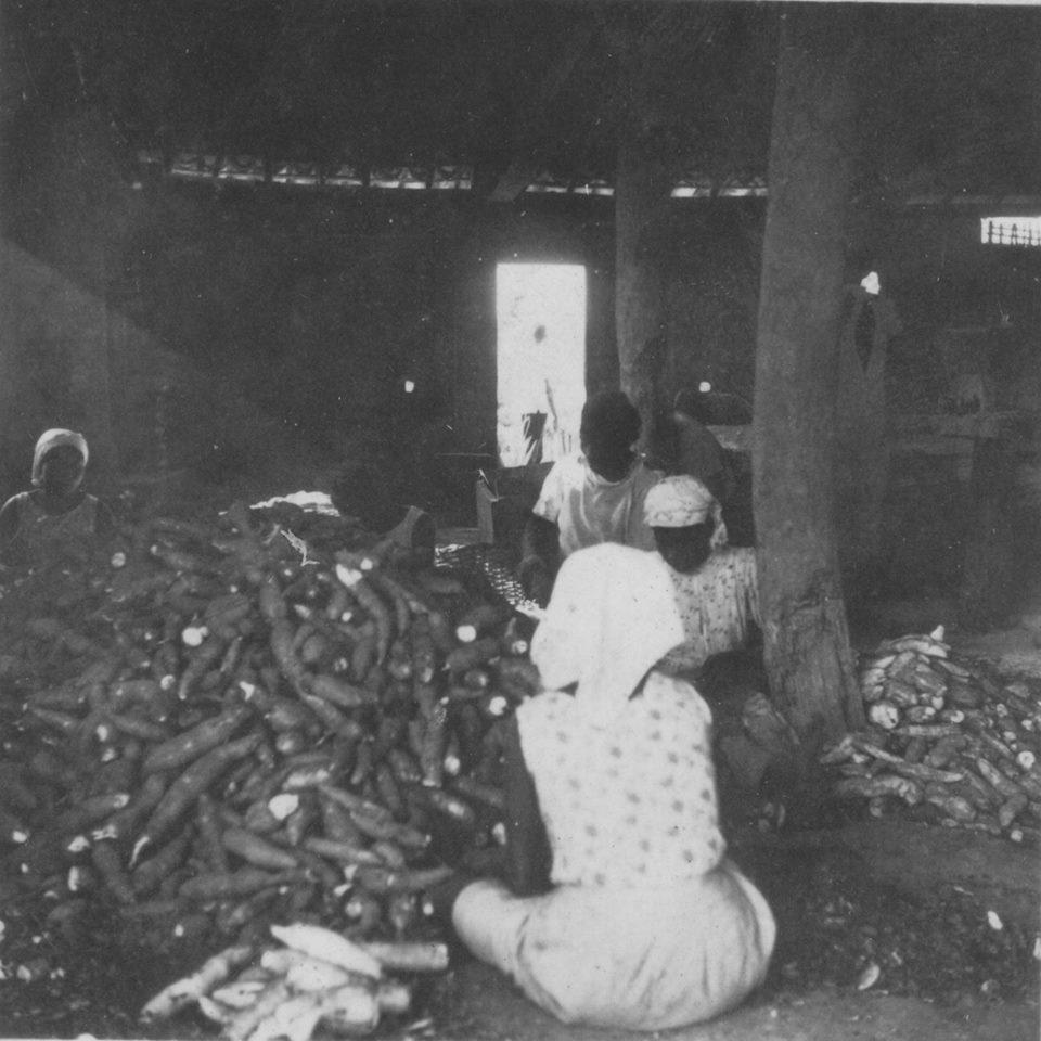 Pau-Rachado - Engenho de Farinha - Raspando mandioca